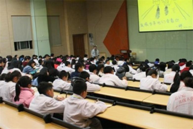 新思维全脑教育加盟