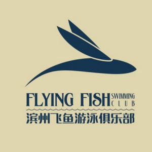 飞鱼游泳培训
