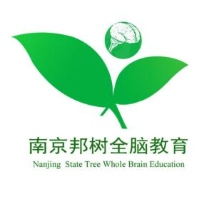 邦树全脑教育