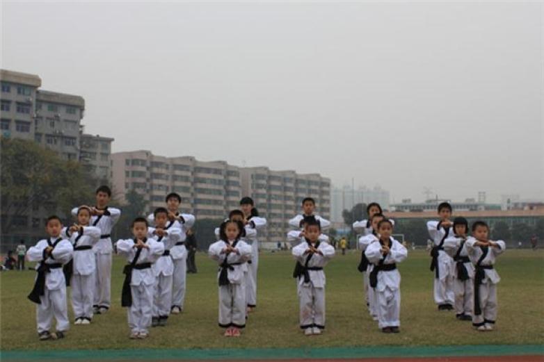 金龙少儿武术培训加盟