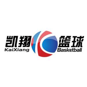 凯翔篮球培训