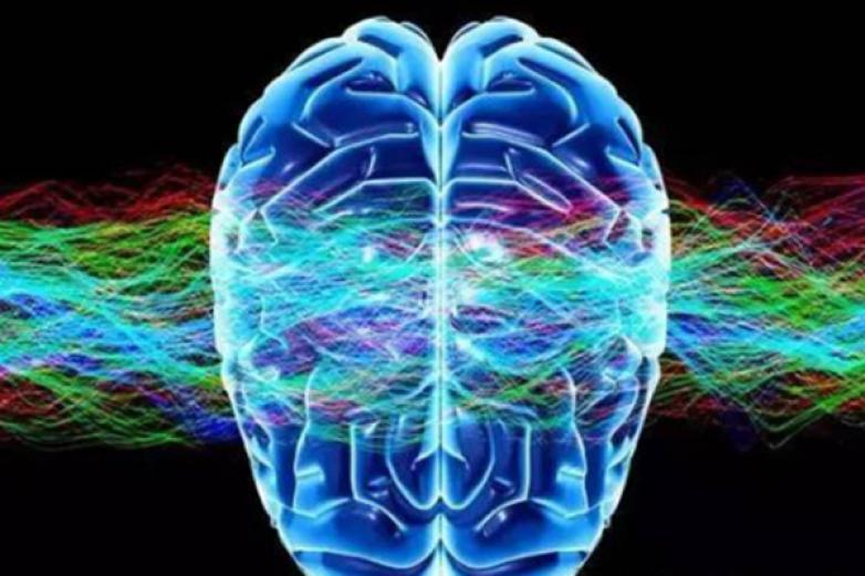 前沿大脑加盟