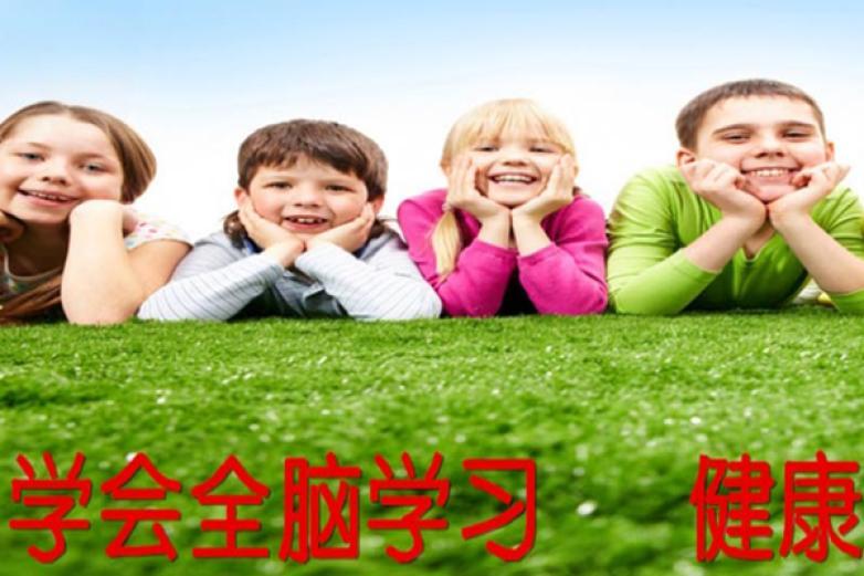 世纪七田国际全脑教育加盟
