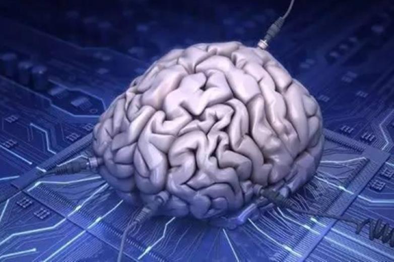 大脑时代加盟