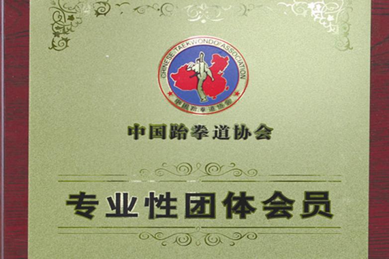 阳光跆拳道加盟