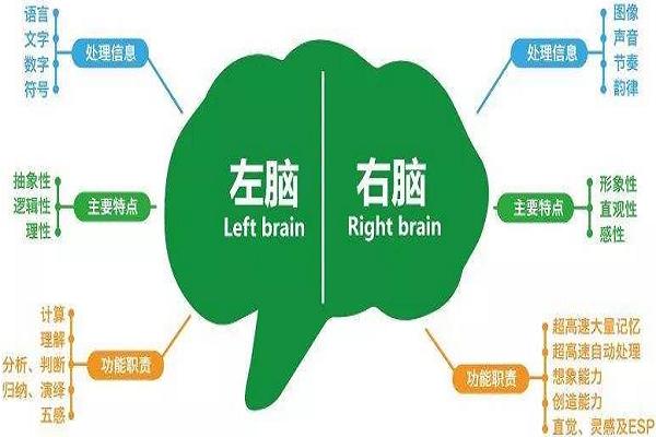 全脑学习加盟开店有风险么