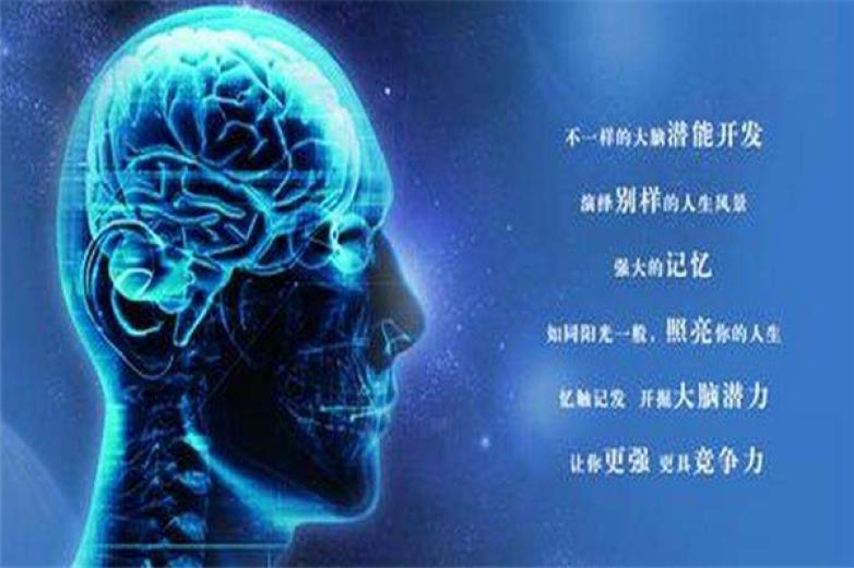 全腦開發加盟