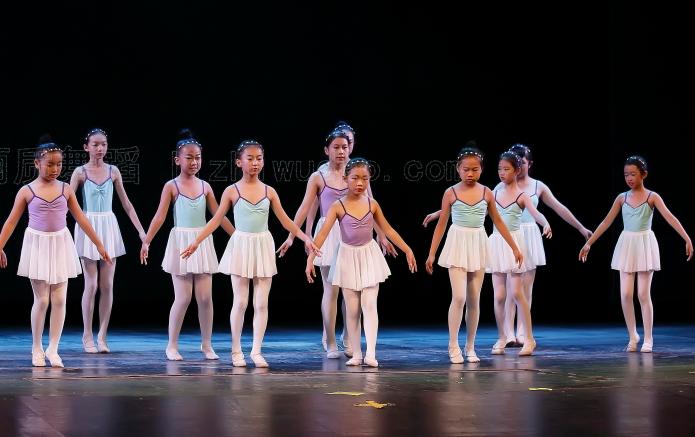 丽质舞蹈加盟费用多少?音乐培训加盟选它合适吗?