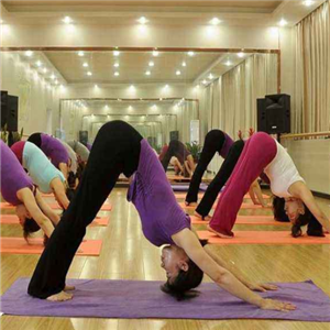 别韵瑜伽健身教育