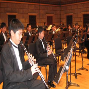 峥嵘吹奏乐培训